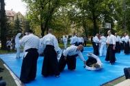 aINkido2019_29